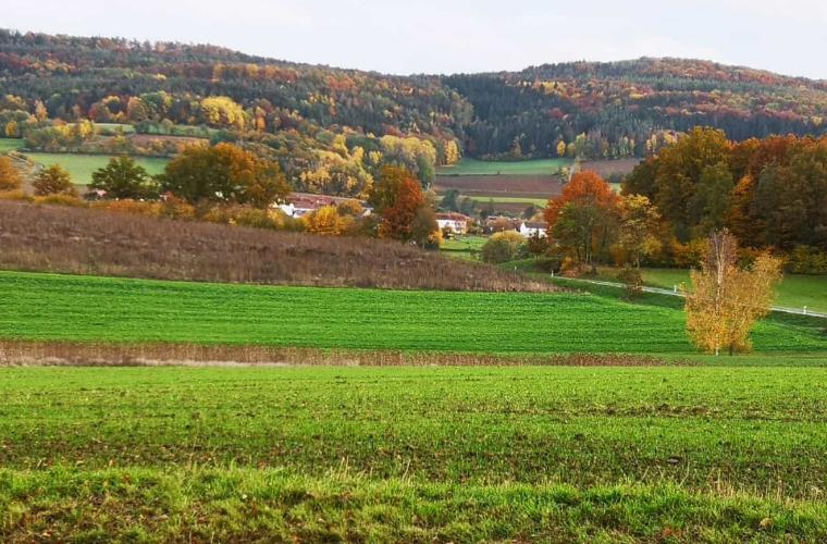 Spiesberg im Herbst