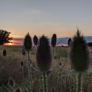 Sonnenuntergang in SpIesberg